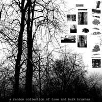 Random Tree and Bark Brushes by prudentia