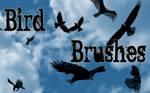 Photoshop Brushes: Birds