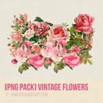 [PNG PACK] Vintage Flowers by U-kari