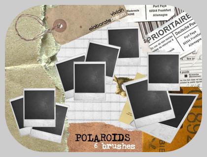 POLAROIDS brushes