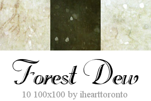 Forest Dew Textures by ihearttoronto