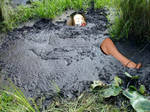 Mandy and Dan'sPeat bog adventure! - Copy by SandyMandy33