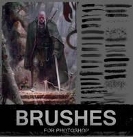 Brushes by piofoks