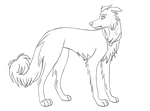 Border Collie Lineart