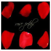 rose petals by r08r17