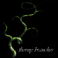 Thorny Branches by r08r17