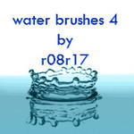 water brushes 4