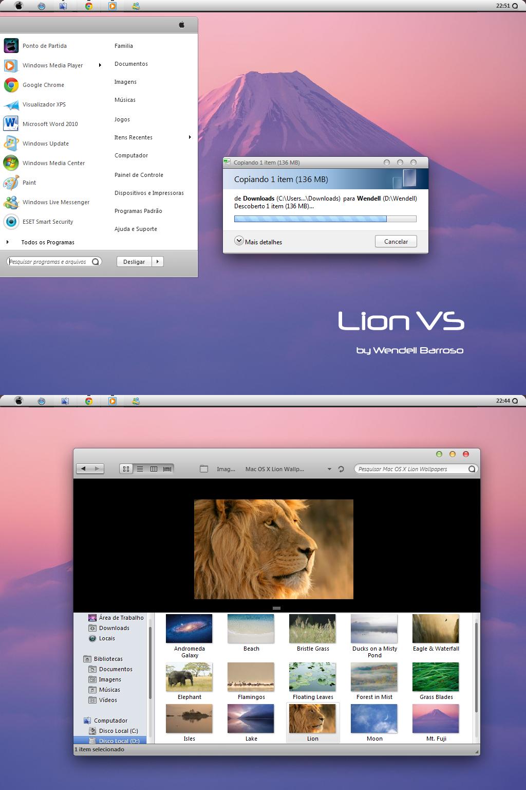 Lion VS by wendellbarroso