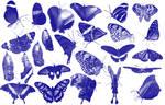 25 butterfly Photoshop brush