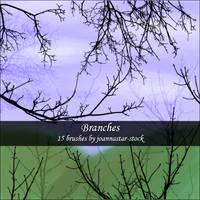 Branch Brushes by joannastar-stock