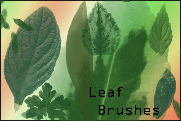 Leaf Brushes by joannastar-stock