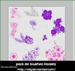 Brushes de Flores By:- CLLQ
