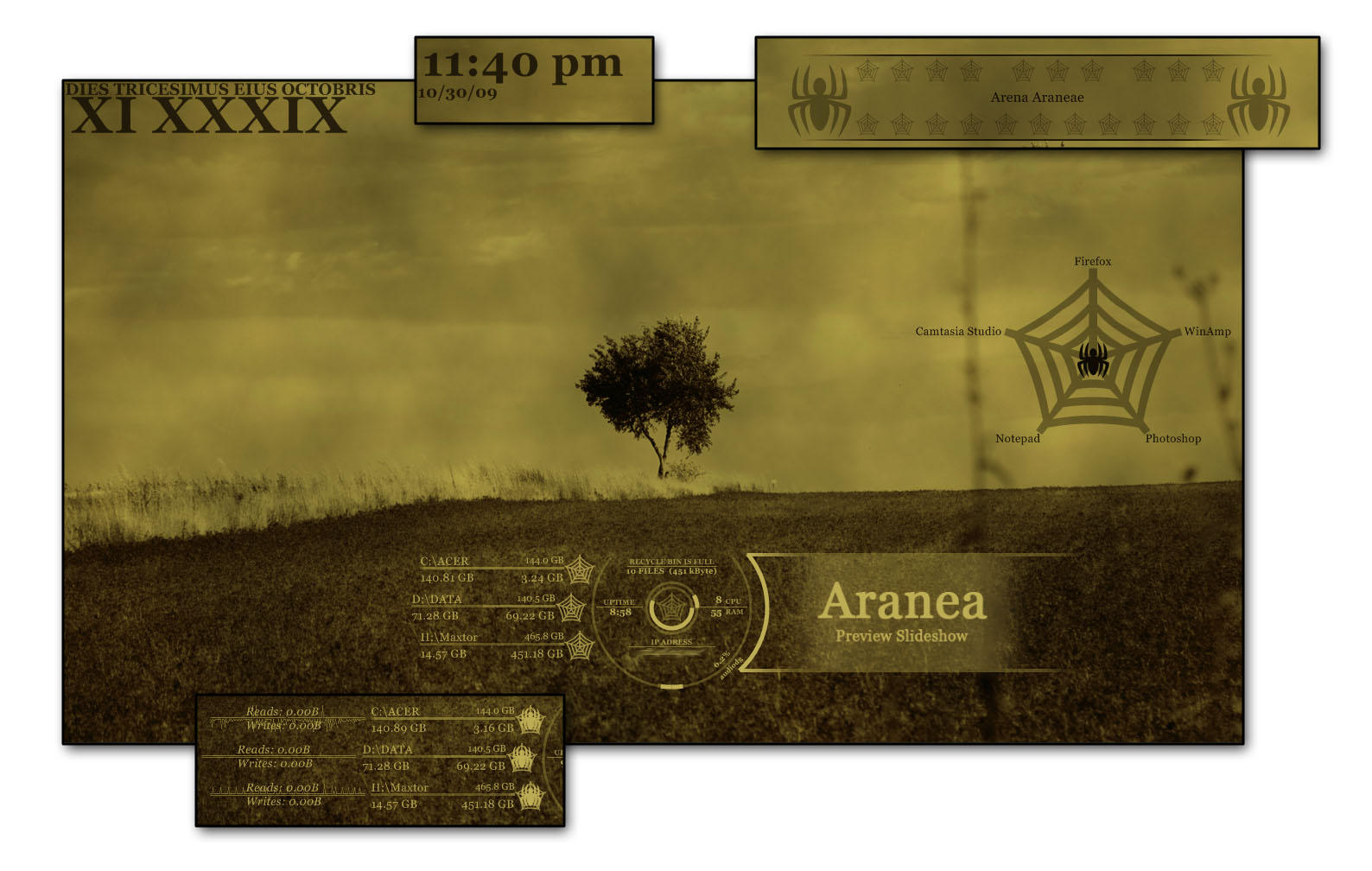 Aranea by bendenfield