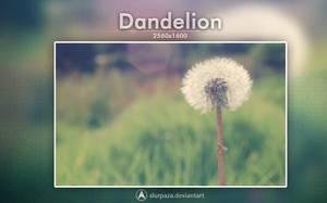 Dandelion by Slurpaza