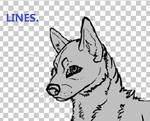 Wolf-dog lineart- .PSD
