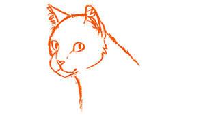 Head Turn Animation (WIP)