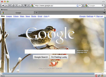 SnowFox: SnowTunes Firefox Fix by epicbard