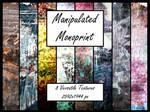 Manipulated Monoprints 2