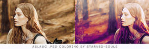 Aslaug psd coloring by starved-souls