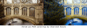 force us PSD coloring by Starved Souls