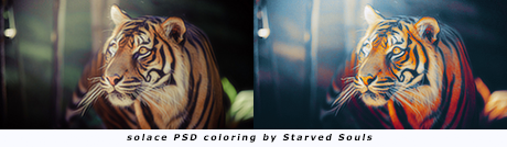 solace PSD coloring by Starved Souls