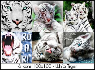 Iconset White Tiger by Sabrina-K-88