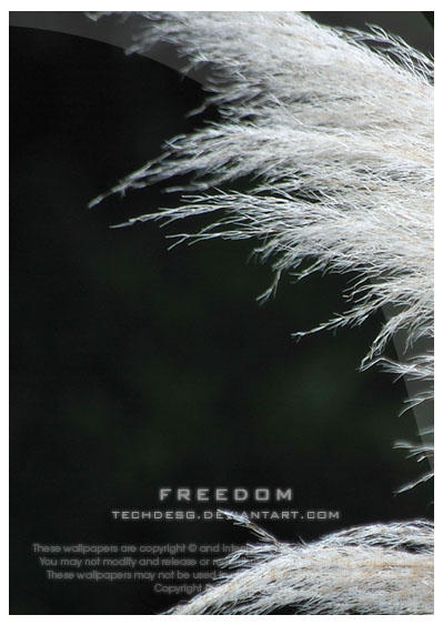 Freedom Wallpack by techdesg