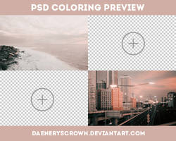 PSD Colorings preview