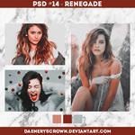 PSD #14 - Renegade