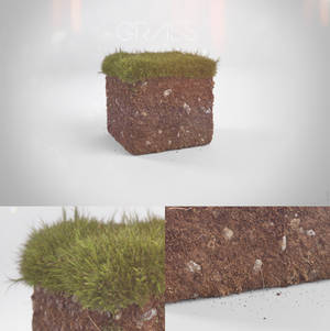 Realistic Minecraft grass block