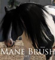 Mane Brushes by SpunkyThoroughbred