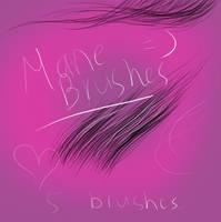 Mane Brush Set 2 by SpunkyThoroughbred