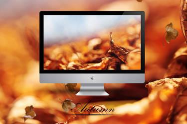 Autumn by Zim2687