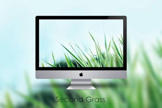 Second Grass