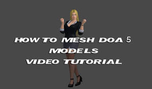 How to mesh DOA5 character (Video Tutorial) FIXED