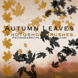 Autumn Leaves Photoshop Brushes by ObscureLilium