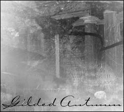 Gilded Autumn - PSP by exotika-brushes