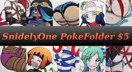SnidelyOne PokeFolder! by SnidelyOne