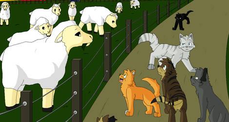 Warriors - Sheep by Miiroku