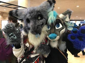 dragons, wolfs, dragon-wolfs? by B-kit1n4m3rika