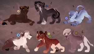 Full body cub adopts. 1 left! by BeeStarART