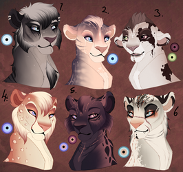 Teen lion adopts. AUCTION. OPEN: 3 still open! by BeeStarART