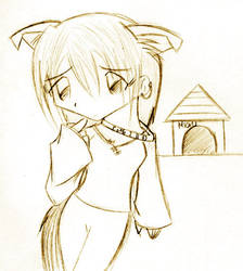Dog House by Mioku