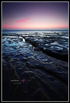 Twilight Starfish by AzureSnow