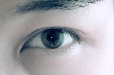 Chinese classic Phoenix Eye by masray