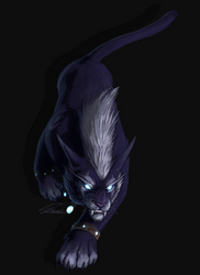 Druid cat by kaithel