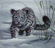 Young Snow Leopard by De-Vagrant