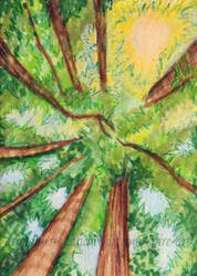 The Canopy ACEO by De-Vagrant