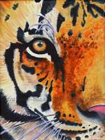Tiger Eye by De-Vagrant
