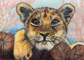 Just Can't Wait ACEO by De-Vagrant